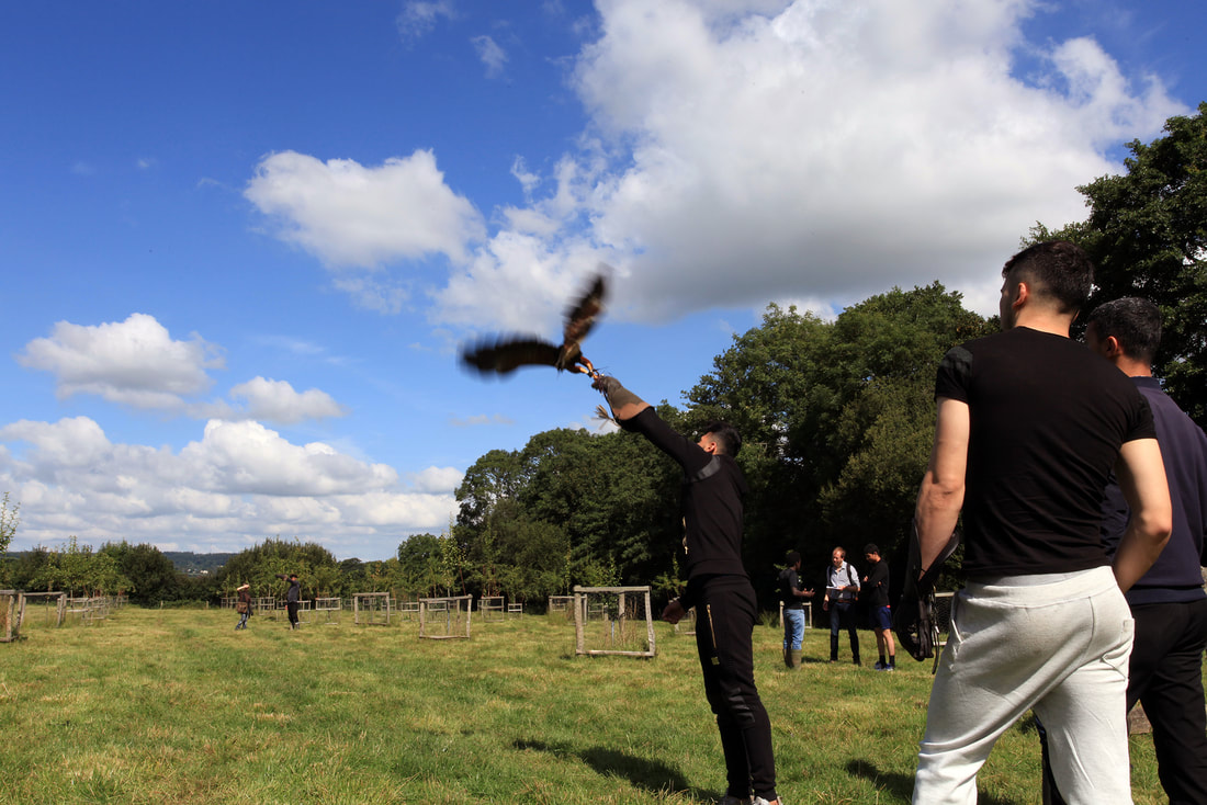 Picture of young refugees flying a bird of prey at Trill Farm in Devon © Vicki Felgate