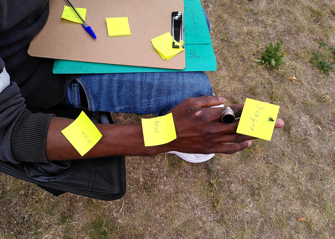 Picture of a boys arm and hand with post-it notes naming the different body part at Big Leaf Foundation Summer School © Louise Baumberg / Big Leaf Foundation
